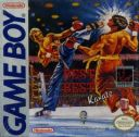 Best of the Best Championship Karate Nintendo Game Boy